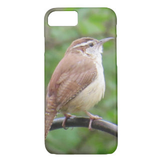 Carolina Wren IPhone Case
