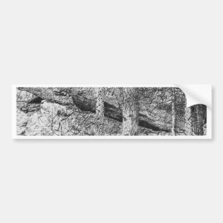Carpathian Forest Graphic Bumper Sticker