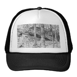 Carpathian Forest Graphic Trucker Hat