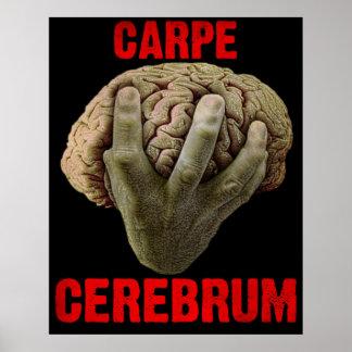 """""""CARPE CEREBRUM"""" poster"""