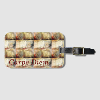 Carpe Diem ---- Luggage Tags