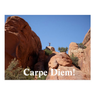 Carpe Diem! Postcard