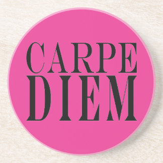 Carpe Diem Seize the Day Latin Quote Happiness Drink Coasters