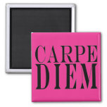 Carpe Diem Seize the Day Latin Quote Happiness Square Magnet