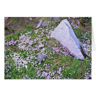 Carpet Of Pink Wildflowers Near Granite flowers Card