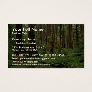 Carpet of sword ferns among old timber business card