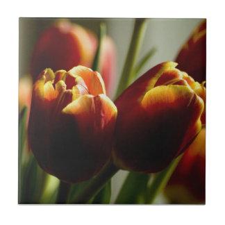 Carreau de céramique de tulipes de bonbons au maïs