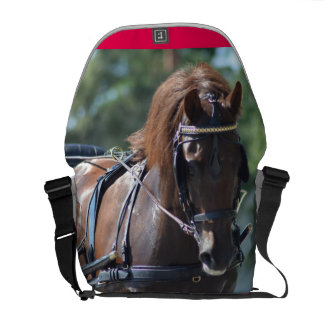 carriage driving commuter bag