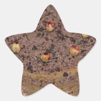 carrot cake star sticker