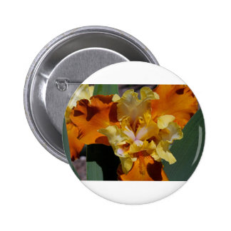 Carrot Petals 2 Inch Round Button
