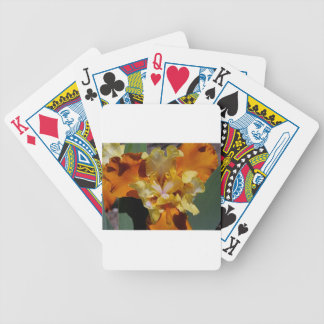 Carrot Petals Poker Deck
