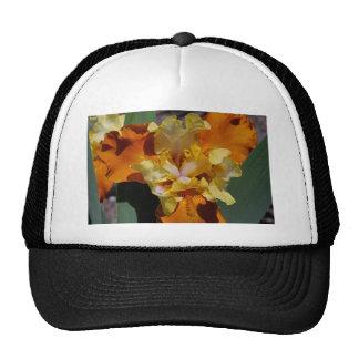 Carrot Petals Trucker Hat