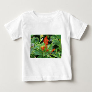 Carrot Salvia Baby T-Shirt