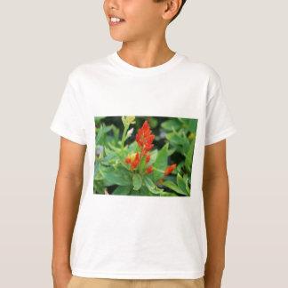 Carrot Salvia T-Shirt
