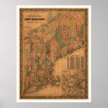Carte 1861 de chemin de fer de la Nouvelle Anglete Poster