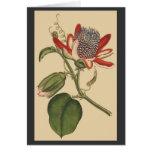 Carte botanique vintage de fleurs