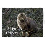 Carte d'anniversaire aux cheveux longs de chat tig