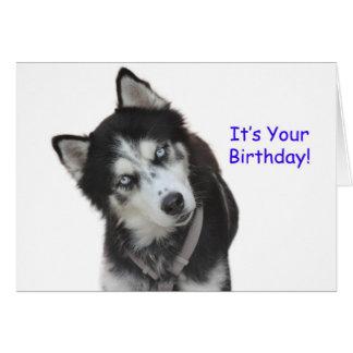 carte anniversaire chien de traineau