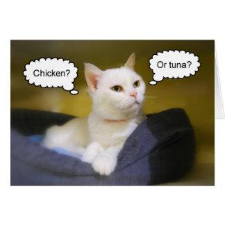 Carte d'anniversaire drôle de chat blanc