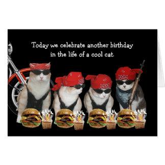 Carte d'anniversaire drôle de chats de cycliste