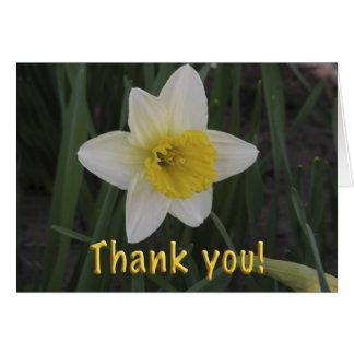 Carte de fleur de jonquille de Merci ! Jonquille d