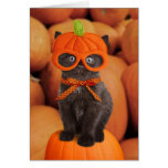 Carte de Halloween de chaton de citrouille