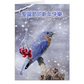 carte de Noël chinoise - oiseau bleu avec des baie