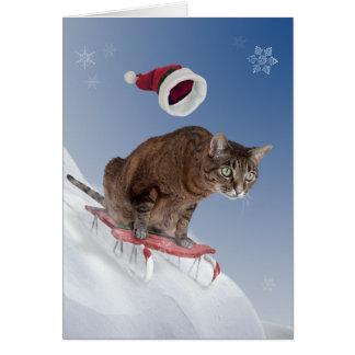 Carte de Noël Sledding de chat