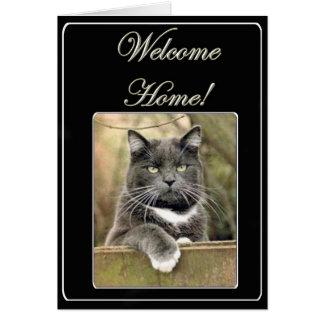 Carte de note à la maison bienvenue de chat