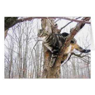 Carte de note de chat tigré