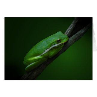 Carte de note de grenouille d arbre