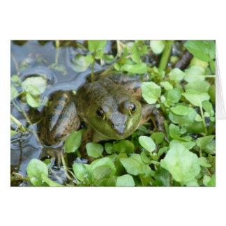 Carte de note de grenouille mugissante