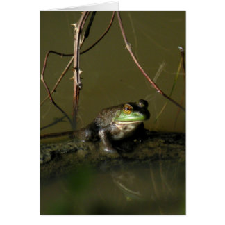 Carte de note de grenouille verte