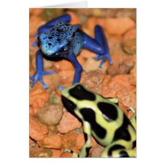 Carte de note de grenouilles de dard