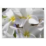Carte de note hawaïenne magnifique de Plumeria