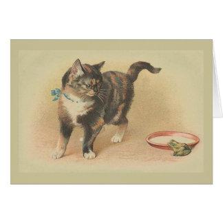 Carte de note vintage de chat et de grenouille