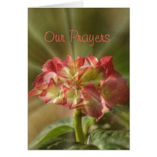 Carte de prière d'hortensia ou toute occasion