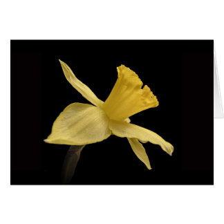Carte de remerciements jaune de jonquille
