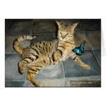 Carte de surprise de chat de la savane