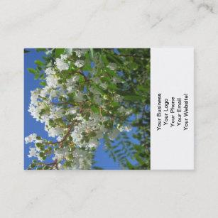 Carte De Visite Branche Darbre Du Myrte Crepe