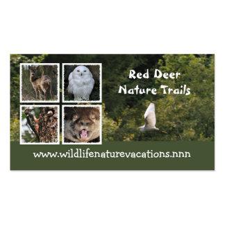 Carte de visite de nature et de faune