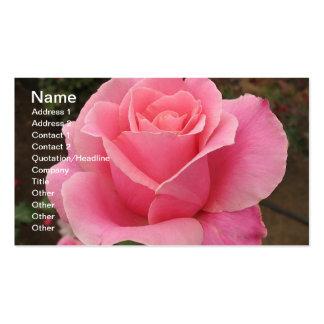 Carte de visite de rose de rose