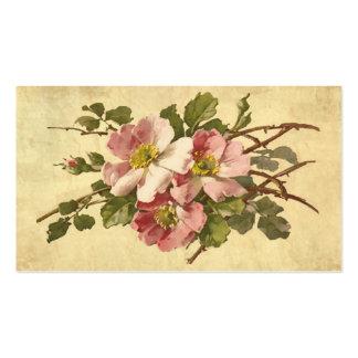 Carte de visite rose élégant de cru de roses