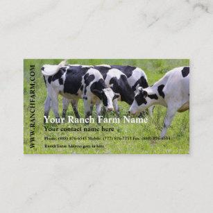 Carte De Visite Traite La Ferme Betail Vache Laitiere