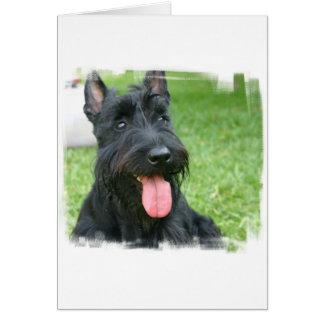 Carte de voeux de chien de Terrier d'écossais