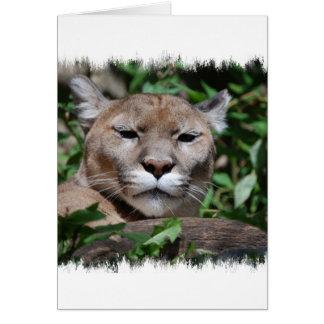 Carte de voeux prédatrice de puma