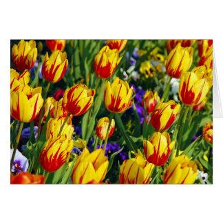 Carte de voeux rayée rouge et jaune de tulipes de