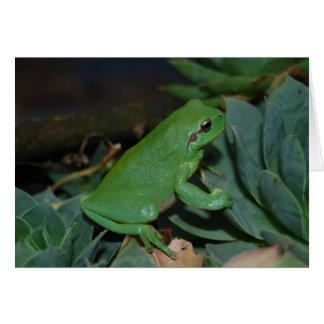 Carte Francoise la grenouille