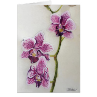"""Carte Phalaenopsis """"orchidée de mite"""" 5"""" x 7"""", avec"""