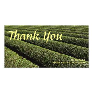 Carte photo de Merci de plantation de thé Photocarte Customisée